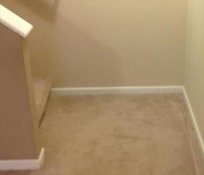 Water Stained Carpet in Mountain Home Gets Saved After