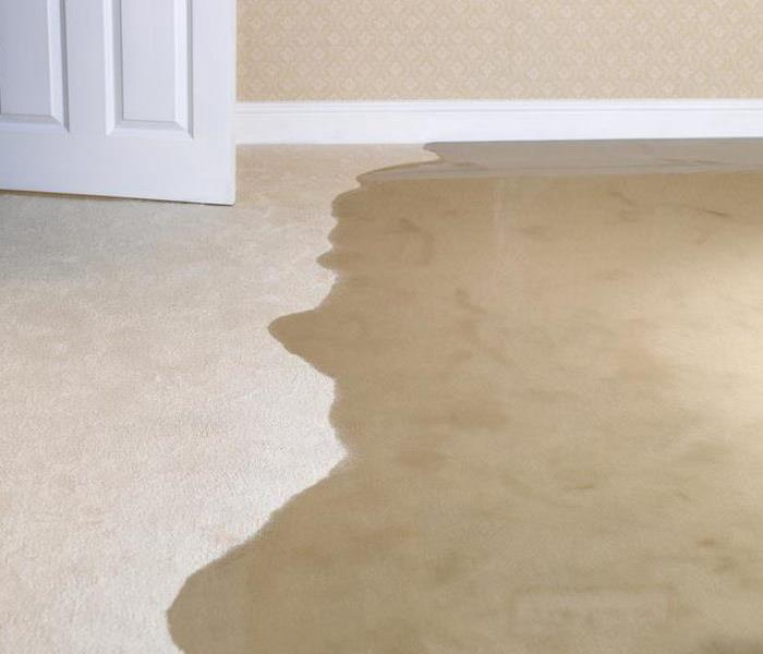 Water Damage SERVPRO Will Save You Money and Time